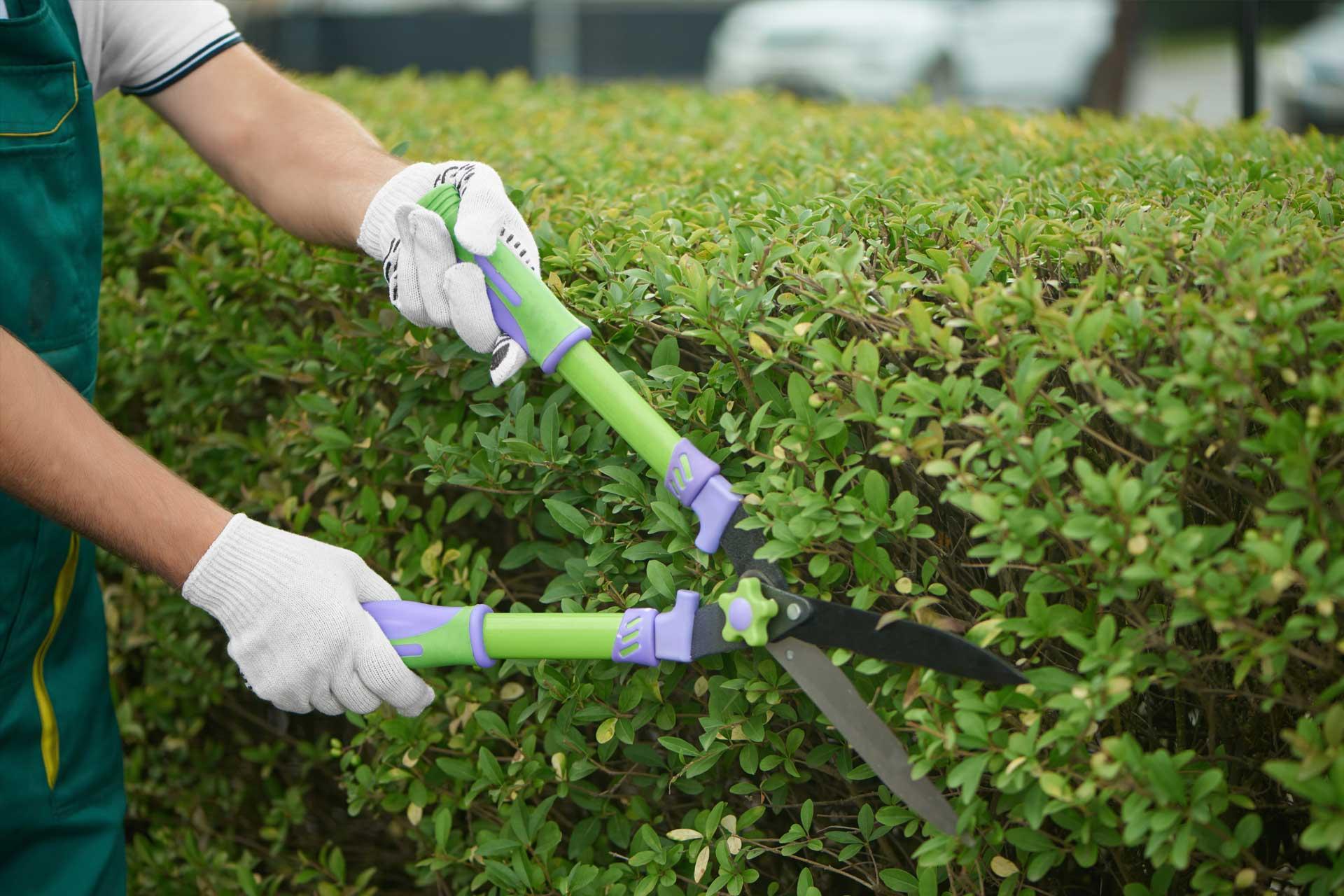 Travail handicapés espaces verts